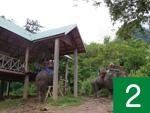 ラオスと象の長い歴史